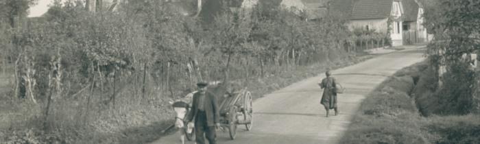 Stettfeld – Versuch einer Darstellung des (wirtschaftlichen) Lebens in der Mitte des vergangenen Jahrhunderts