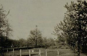 Hirschstr. Nr. 18 - 20 Storchennest im Sandloch