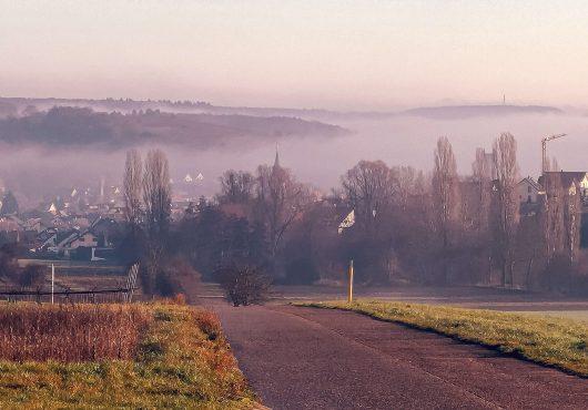 Nebelverhangenes Zeutern. Foto: Harald Dorwarth