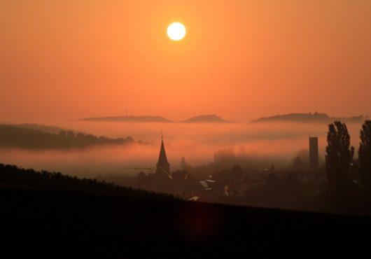 Zeutern im Nebel im Jahr 2020. Foto: Bernhard Schäfer